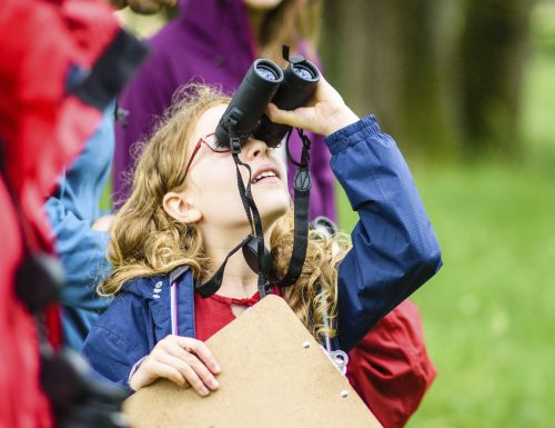 Family spotting wildlife at The Festival of Nature, Bath Bioblitz, Bushey Norwood, Somerset, June
